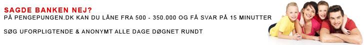 pengepungen.dk