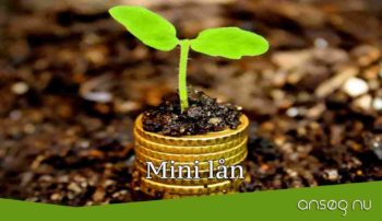 Mini lån